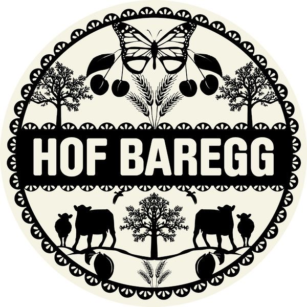 Logo Hof Baregg.jpg